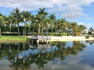 pembroke isles homes for sale