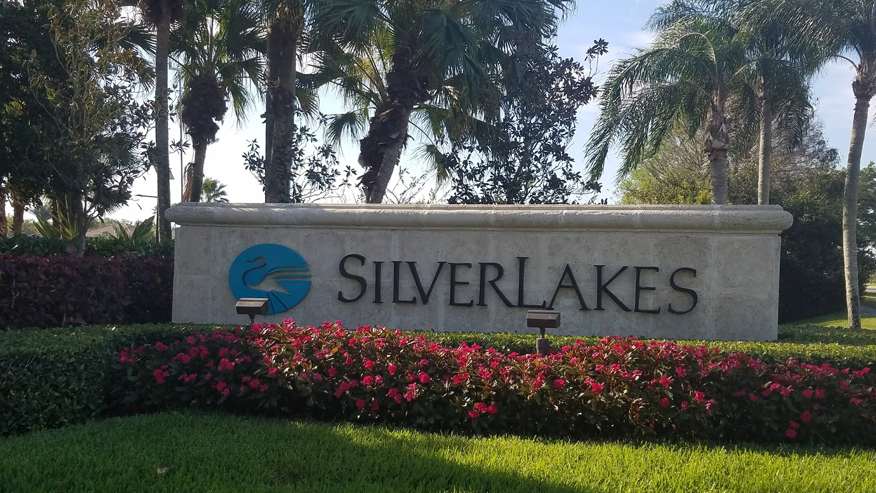 Silver Lakes Market Intelligence Series